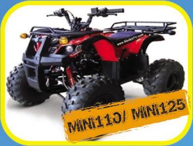 ATV  MINI 110 / 125